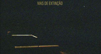 BENJAMIM - VIAS DE EXTINÇÃO capa
